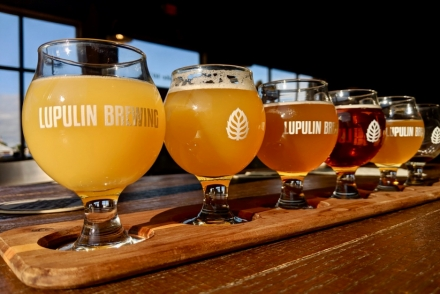 Lupulin Flight